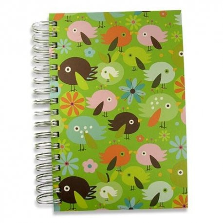 Jumbo Birdbrain Journal Notebook-100% post-consumer-waste writing journal 6x9 inches double-spiral-bound 300 green-lined pages